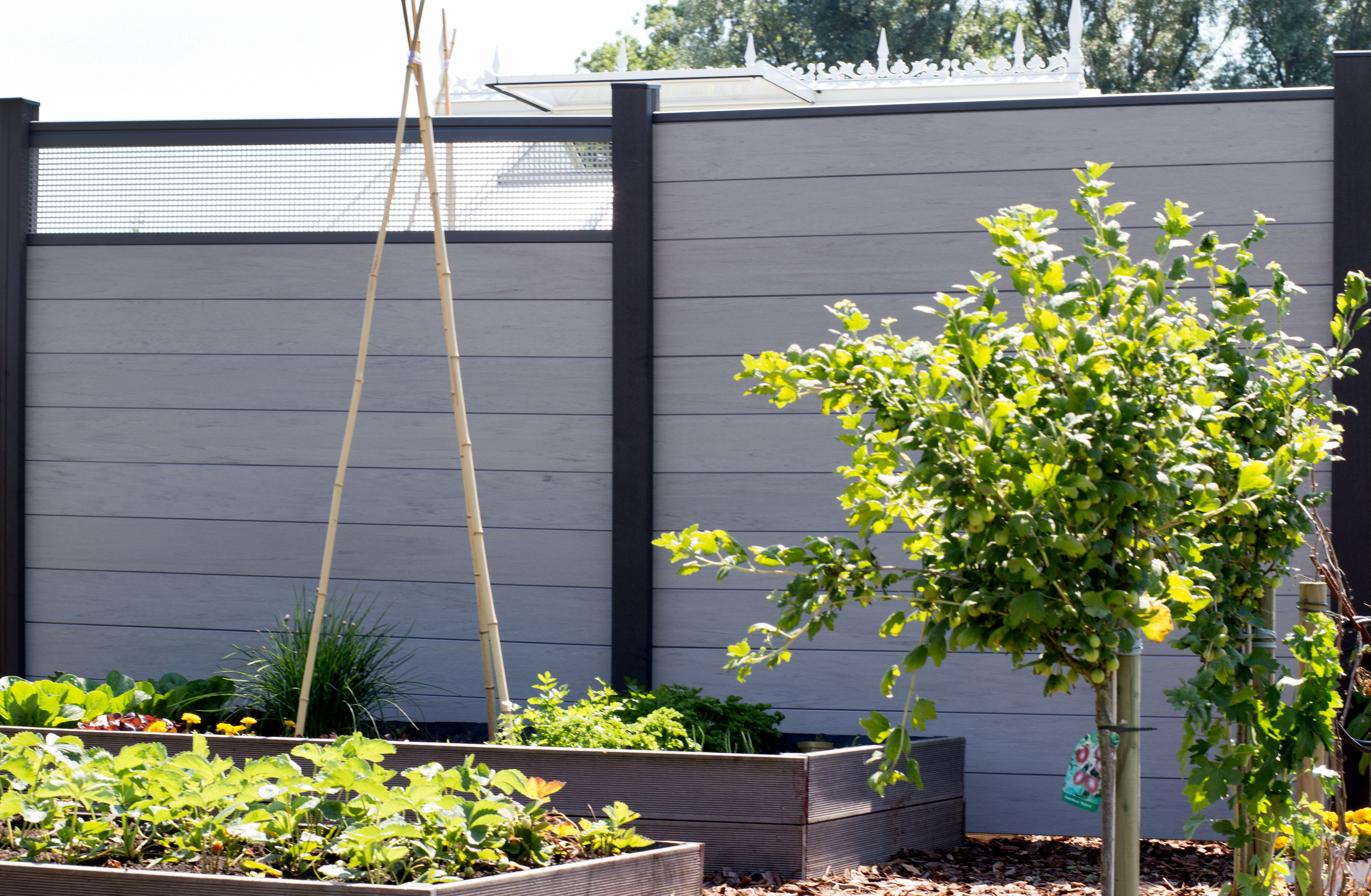 Bpc Zaun Stecksystem Solid 180 X 180 X 1 9 Cm Lochblech Einsatz 30 Cm Ohne Pfosten Farbe Wahlweise Gartenzaun Kunststoff Wpc Glas Zaune Newgarden